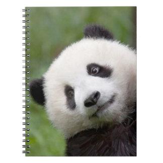 Pintura del cachorro de la panda libros de apuntes