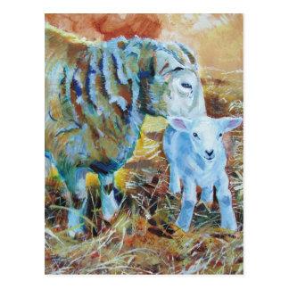 Pintura del cordero y de las ovejas postal