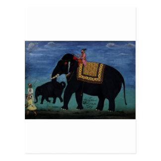 Pintura del elefante tarjetas postales