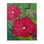 Pintura del hibisco #3 tarjeta postal