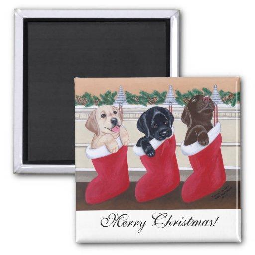 Pintura del navidad de los perritos del labrador r imanes para frigoríficos