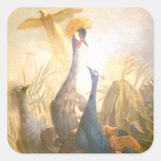 Pintura del pavo real del vintage pegatina cuadrada