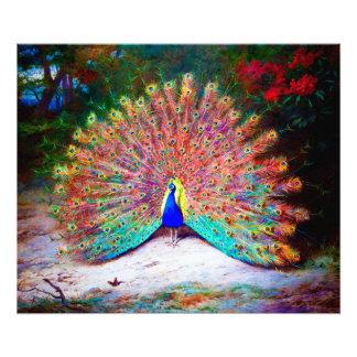 Pintura del pavo real del vintage impresión fotográfica