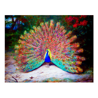 Pintura del pavo real del vintage postal