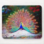Pintura del pavo real del vintage tapetes de raton