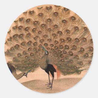 Pintura del pavo real pegatina redonda