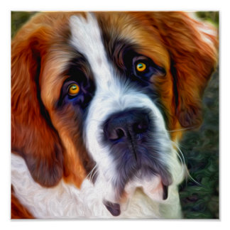 Pintura del perro de St Bernard Póster