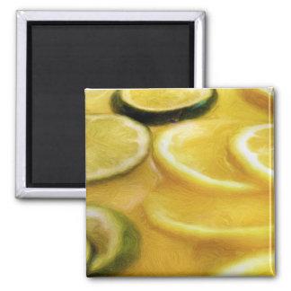 Pintura del sacador de la fruta cítrica imán cuadrado