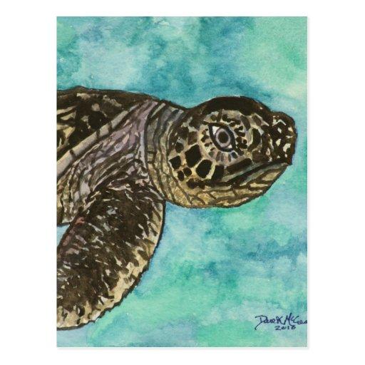 pintura del sealife de la tortuga de mar del bebé tarjetas postales