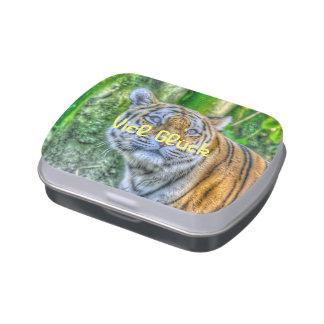 Pintura del tigre latas de caramelos