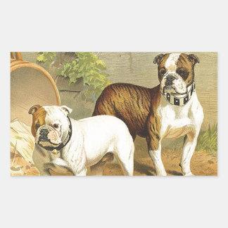 Pintura del vintage de dogos ingleses pegatina rectangular