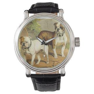 Pintura del vintage de dogos ingleses relojes de pulsera