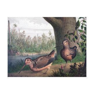 Pintura del vintage de los pájaros de juego de las lienzo envuelto para galerías
