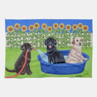 Pintura divertida de Labradors de la fiesta en la Toalla