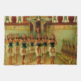 Pintura egipcia del vintage toallas de cocina
