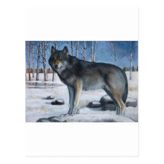 Pintura en colores pastel del aceite: Lobo gris so Tarjeta Postal