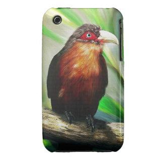 Pintura exótica colorida fresca del pájaro tropica iPhone 3 cárcasa