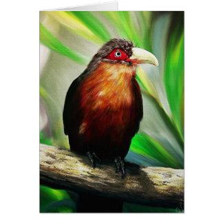 Pintura exótica colorida fresca del pájaro tropica tarjetón