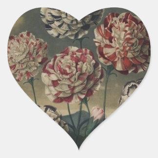 Pintura floral del clavel del vintage pegatina en forma de corazón