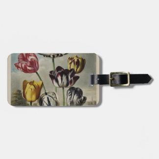 Pintura floral del tulipán del vintage etiqueta de maleta