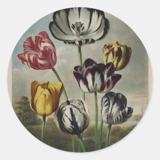 Pintura floral del tulipán del vintage pegatina redonda