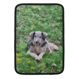Pintura gris del perro fundas para macbook air