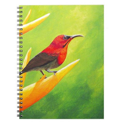 ¡Pintura hermosa de Sunbird!  Artista Elena Esina  Libros De Apuntes Con Espiral