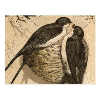 Pintura linda blanca negra de los pájaros del amor postales