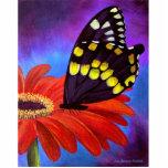 Pintura negra de la margarita de la mariposa - mul escultura fotográfica