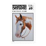 Pintura occidental del caballo sello