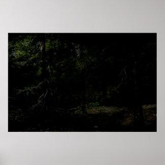 Pintura oscura de Forrest Digital Póster