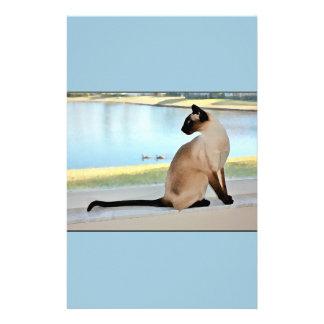 Pintura pacífica del gato siamés  papeleria