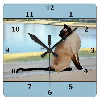 Pintura pacífica del gato siamés reloj cuadrado