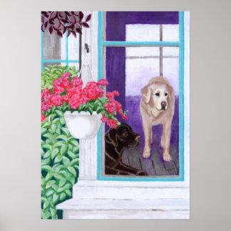 Pintura perezosa de Labradors de la tarde Poster