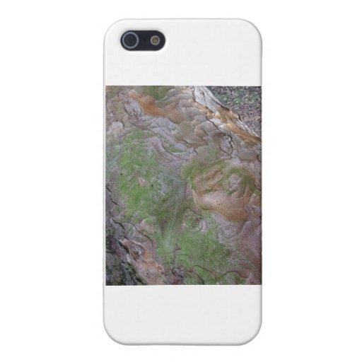 Pintura por la naturaleza iPhone 5 carcasa