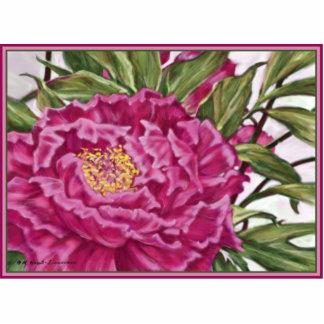 Pintura púrpura del jardín de flores del Peony Esculturas Fotográficas