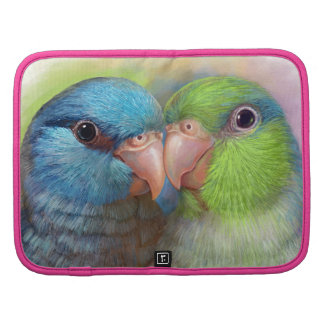 Pintura realista del loro pacífico del parrotlet organizador