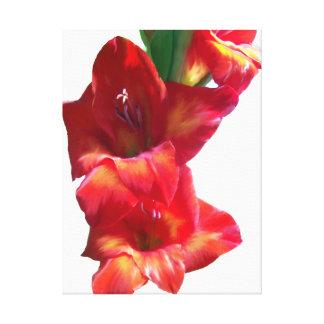Pintura roja de Gladiolas Lona Estirada Galerias