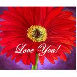 Pintura roja de la flor de la margarita - multi escultura fotografica