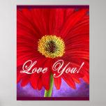 Pintura roja de la flor de la margarita - multi posters