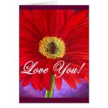 Pintura roja de la flor de la margarita - multi tarjetón