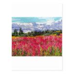 Pintura rosada de la alfombra postal