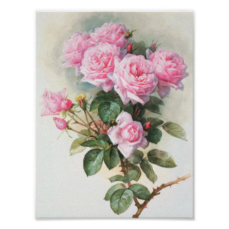 Pintura rosada de los rosas del vintage póster