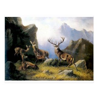 Pintura salvaje de los anomals de la naturaleza de postal