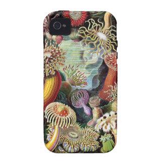 Pintura subacuática del coral y de Sealife del vin Case-Mate iPhone 4 Carcasas