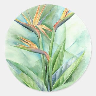 Pintura tropical de la ave del paraíso de la flor pegatina redonda