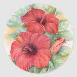 Pintura tropical de la flor del hibisco rojo - etiqueta redonda