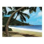 Pintura tropical de la playa postales