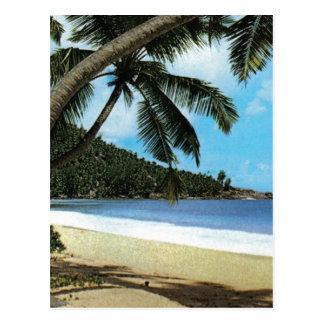 Pintura tropical de la playa postal