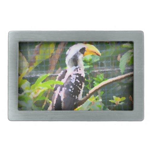 pintura tropical del extracto del pájaro del hornb hebillas de cinturón rectangulares